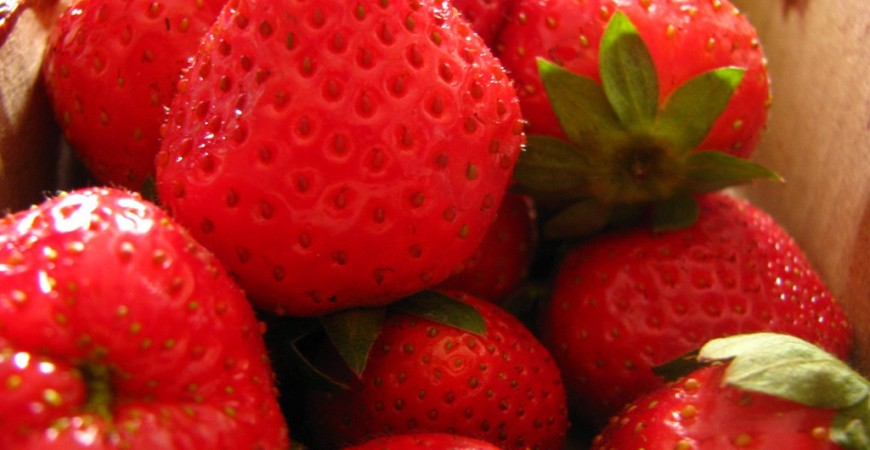 Baguio: Strawberries, Cold Weather and Paradise