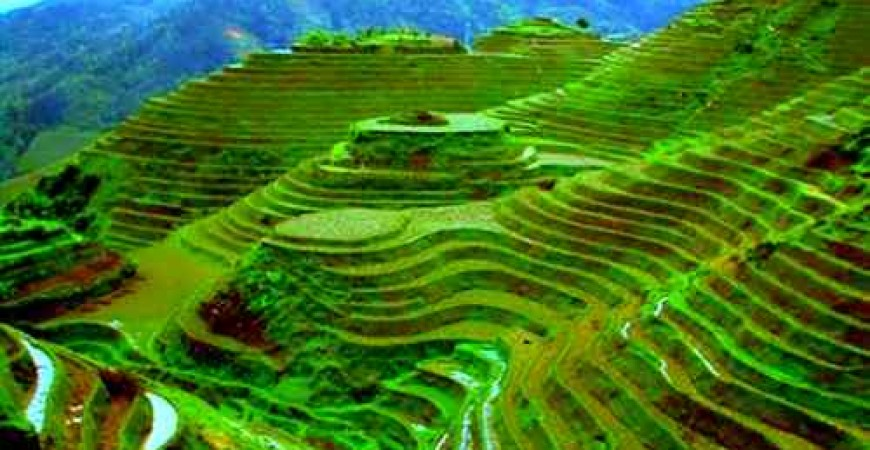 Banaue Rice Terraces  – See the Eighth Wonder of the World