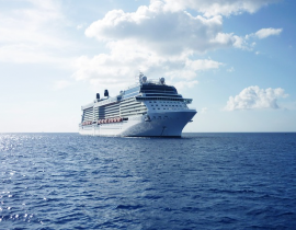 How To Choose The Perfect Cruise