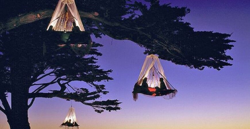 Get Enthralled By Tree Camping At  Elf, California